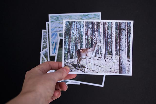art_photo_cards_set4