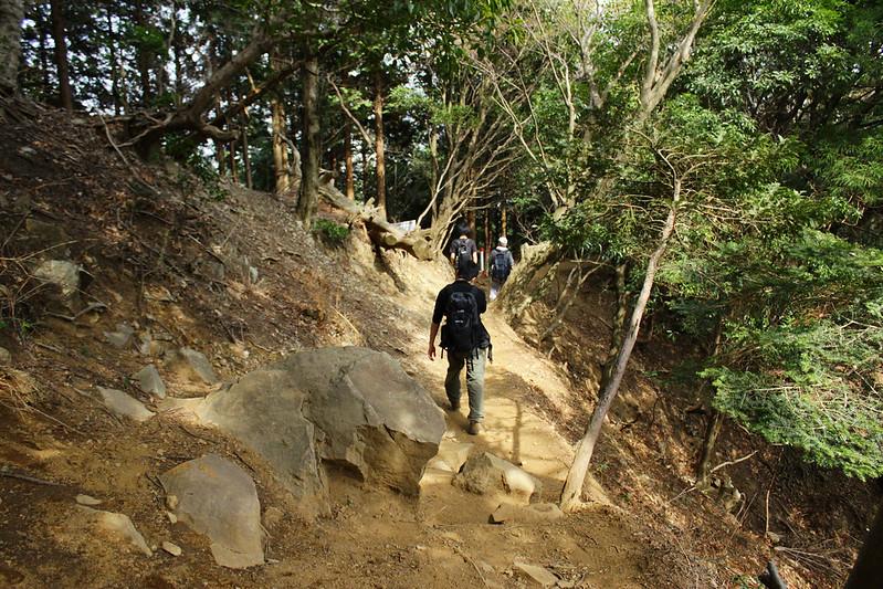 20110417-大山-0106.jpg