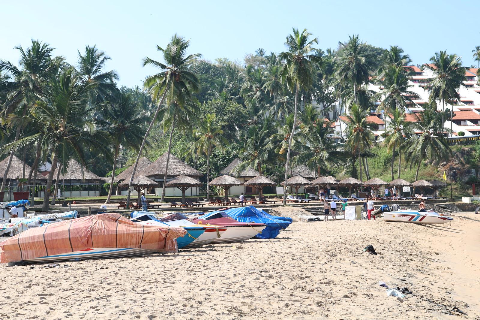 Grow Beach
