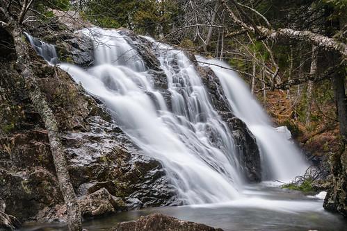 new tree water rock waterfall nikon stream outdoor brunswick falls newbrunswick serene brook nikkor mossglen nbphoto mossglenfalls nikond3300 d3300