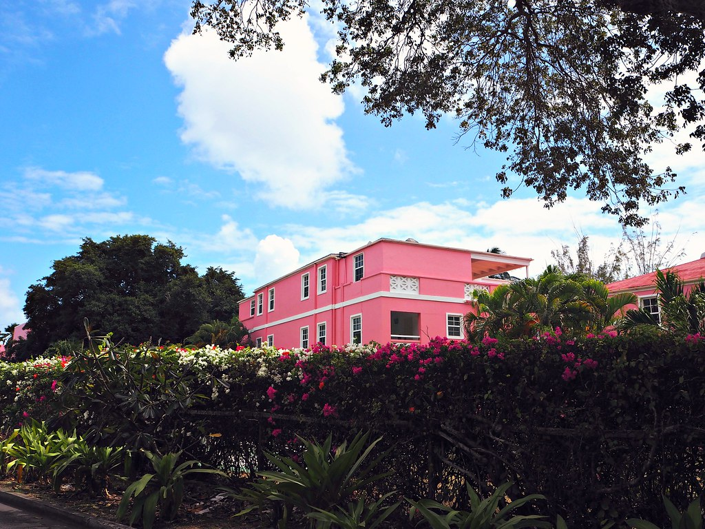 The Little Magpie Southern Palms Barbados Review 47