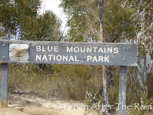 150918c Blue Mountain Scenic World _45 _SH