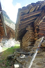 Rossa Val Calanca