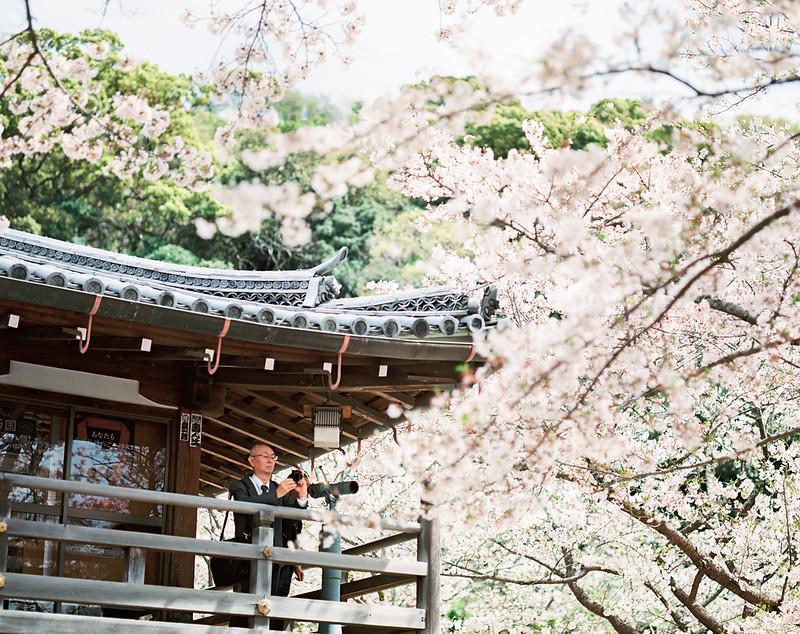 160330-0407 關西:紀三井寺