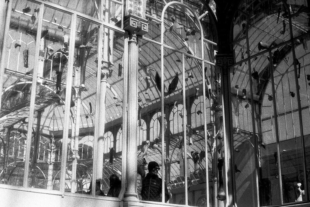 El palacio analógico.