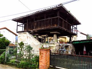 Camino Primitivo - 1 Oviedo-Grado (58)