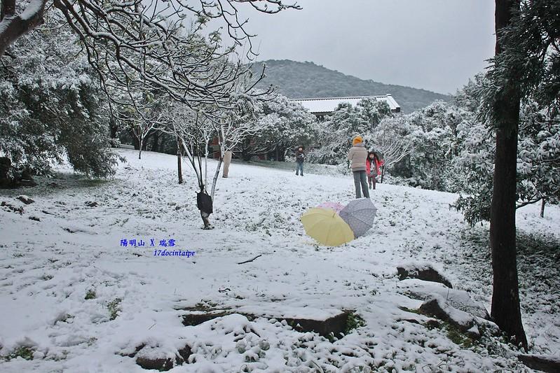 2016-台北陽明山-瑞雪-難得一見的雪白山景-17度C隨拍 (56)
