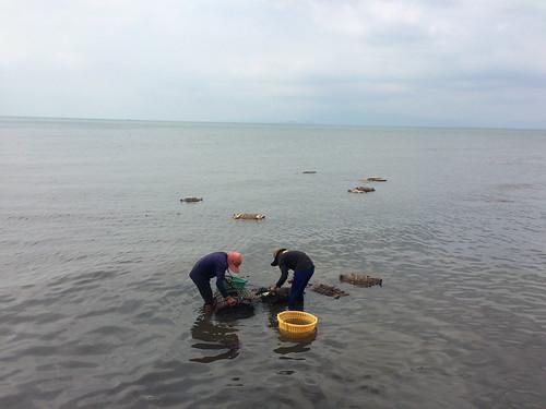 Kep et son fameux marché aux crabes