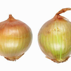 onions-0115