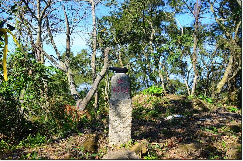 陳東坑山二等三角點(#4208 Elev. 650 m) 1