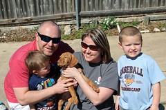 16-02-27 Puppies 661