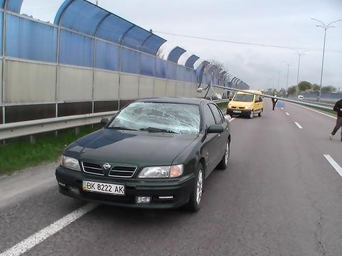 Пригода на трасі Київ-Чоп: на автомобіль впала електроопора