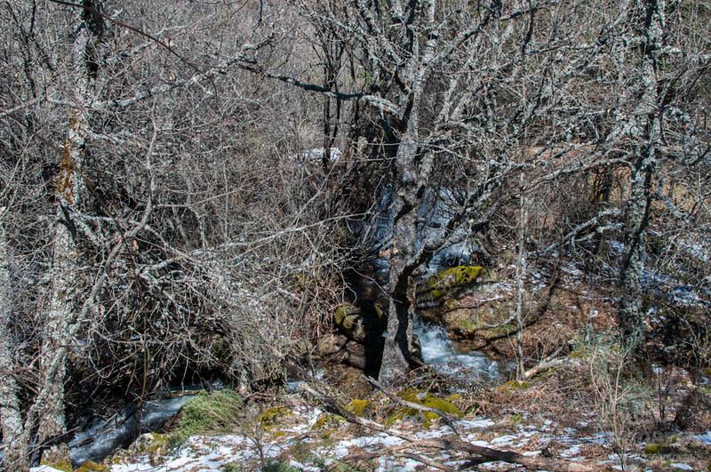 Ruta al Chorro grande de la Granja