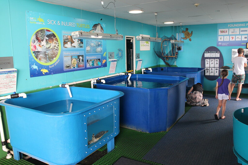 Townsville HQ Reef Aquarium