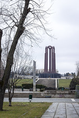 The Monument in Carol Park
