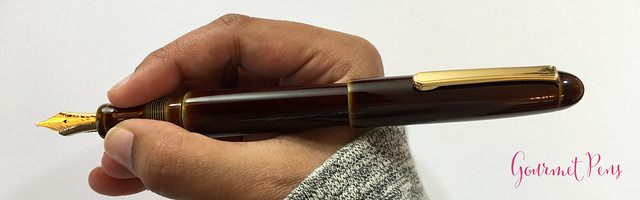Review Nakaya Cigar Writer Heki-Tamenuri Fountain Pen (18)