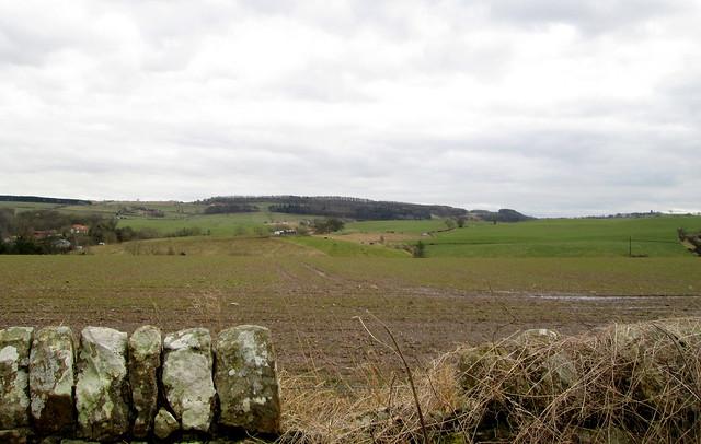 landscape  in Fife