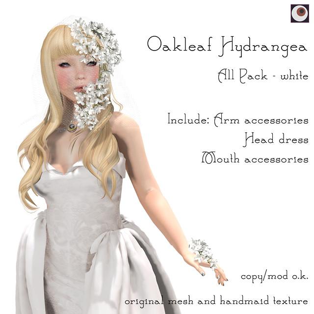 *NAMINOKE*Oaklear Hydrangea - White