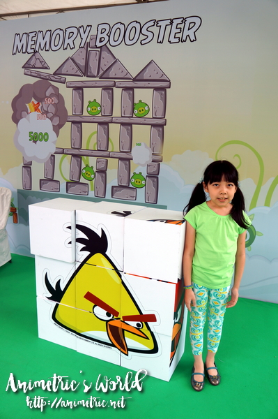 Angry Birds The Experience