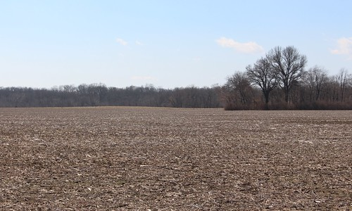 winter field rural illinois cornfield cut farm southernillinois p60 stclaircountyil stclaircountyhighwayp60 floravillerd