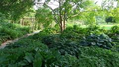 The Pie Garden