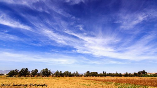 trees sky clouds canon landscape outdoor ngc skylines cyprus bluesky tokina dslr f28 t3i nicosia landscapephotography canonphotography canonusers skylovers 1116mm dxii