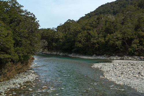 newzealand sunlight river bush rocks shade nz southisland mtaspiringnationalpark bluepools beechforest makarorariver haastrd