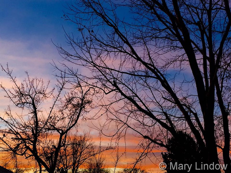 January brings some amazing sunsets as seen in this image from Mary Lindow. Scroll down for a complete slideshow for the month. (Mary Lindow)