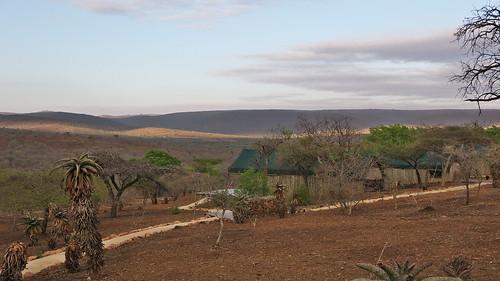 southafrica mavelagamelodge zululandrhinoreserve