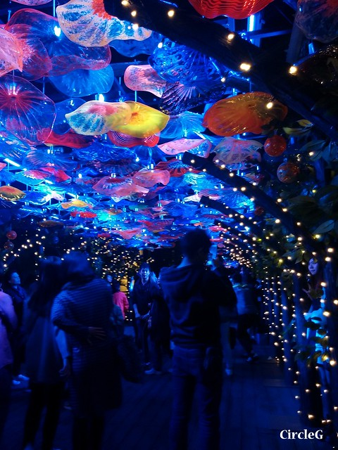 NEW TOWN PLAZA SHA TIN HONGKONG 沙田 新城市廣場 2015 CIRCLEG 聖誕裝飾 (12)