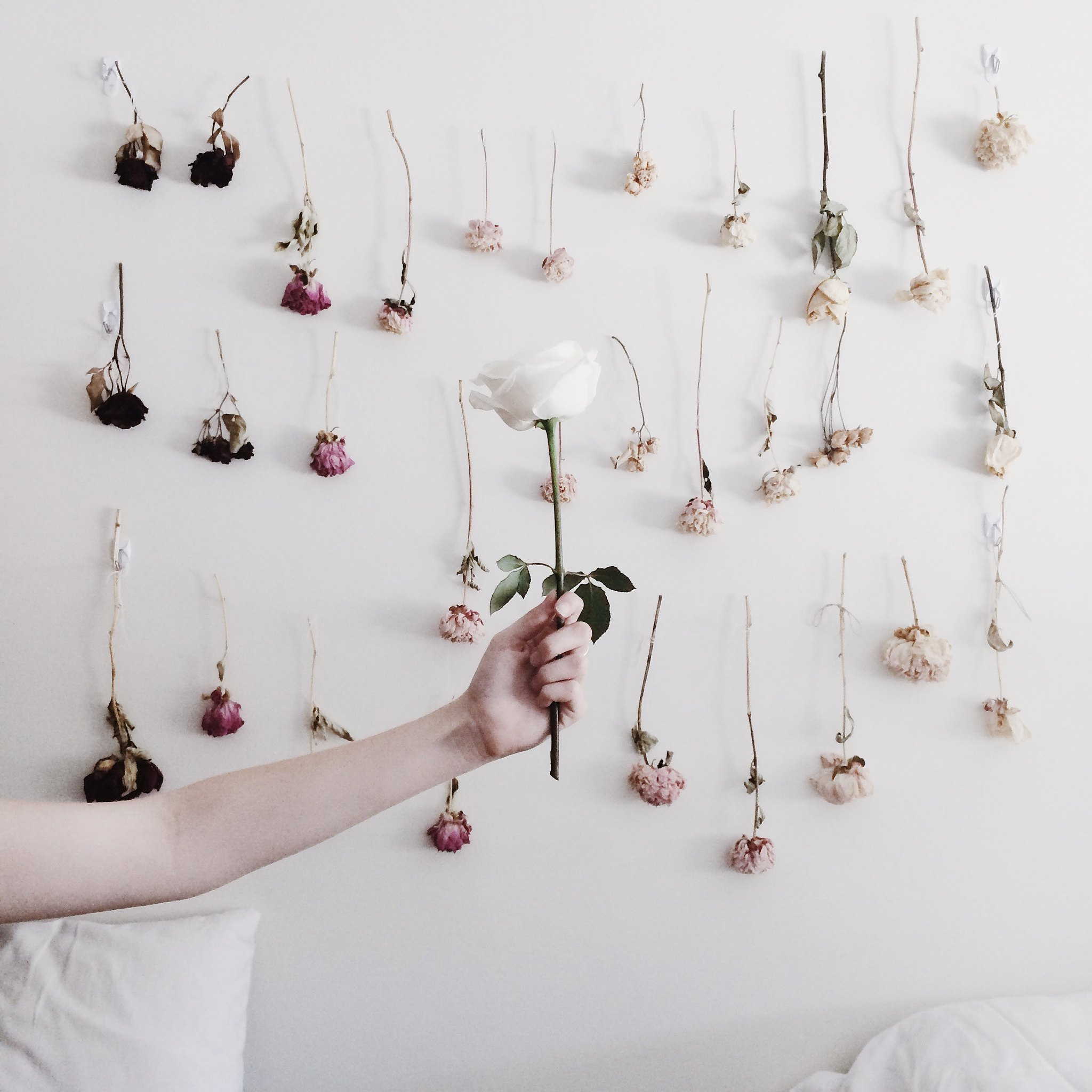 How To Preserve Flowers and Make a Dried Flower Wall on  juliettelaura.blogspot.com
