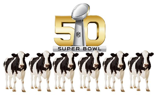 Animal Sacrifce at the Superbowl