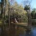 Paddling Shell Creek-2054830.jpg