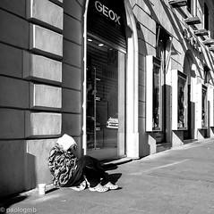 begging in the sunlight