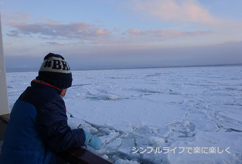 流氷、おーろら号流氷帯