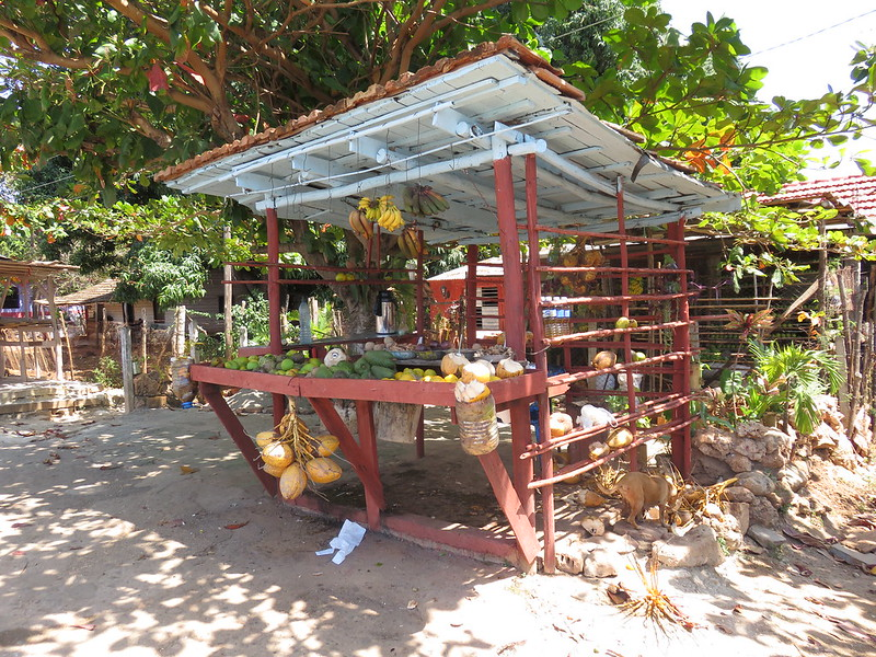 Fruit stand on the side of the road, Cuba
