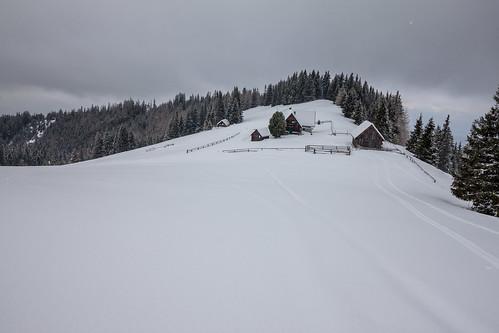 österreich steiermark wildeggkogel vorderleitenhütte gemeindesanktlorenzenbeiknit gemeindesanktlorenzenbeiknittelfeld