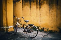 photos in Flickr Explore