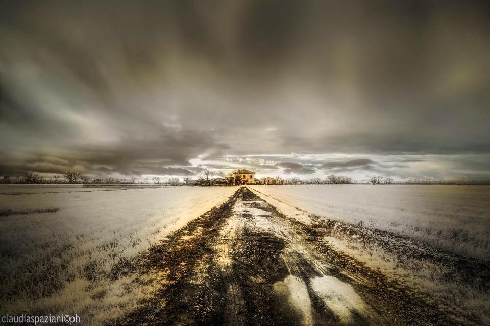 Il viale by Claudia Speziale