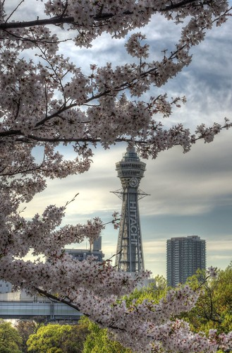 Tennoji Park area, Osaka on APR 05, 2016 (9)