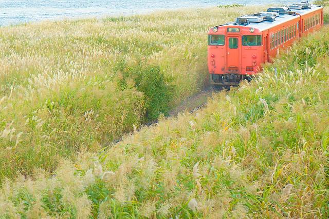 JR East, Gono Line #047 - Dream Train
