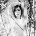 Between Twisted Branches by Lucia Mondini