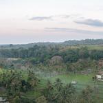 Arrozales de Lombok