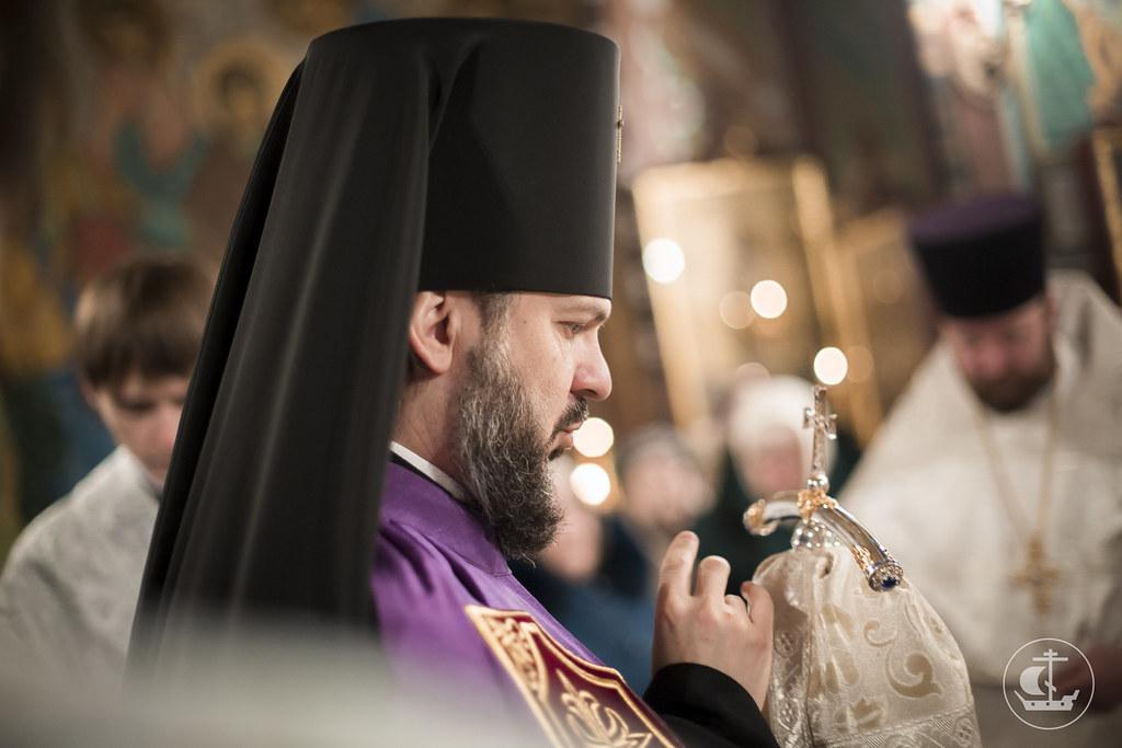 24 января 2016, Литургия в Петергофе / 24 January 2016, Divine Liturgy in Peterhof