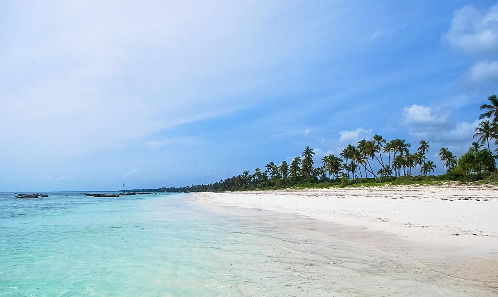 Mnemba Atoll snorkeling tour