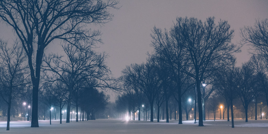 Victory Memorial Parkway - Winter Storm