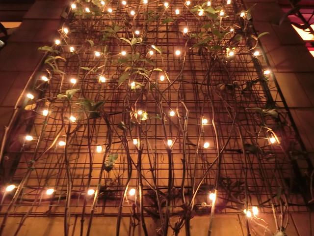 Lighted Trellises (*love*)