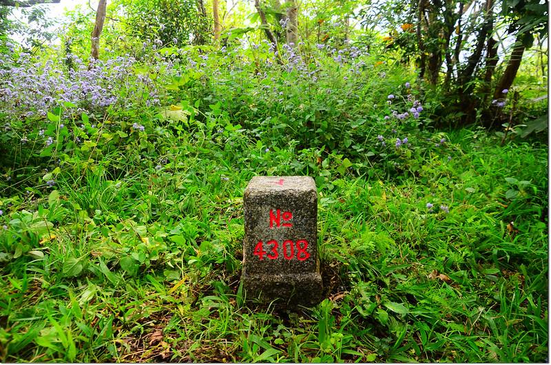 貓公越山三等三角點(# 4308 Elev. 317 m) 1