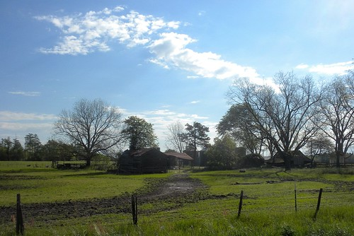 roof sky sc wet grass barn work fence spring wire post mud farm air shed southcarolina fresh clear carolina