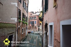 Venise 2015